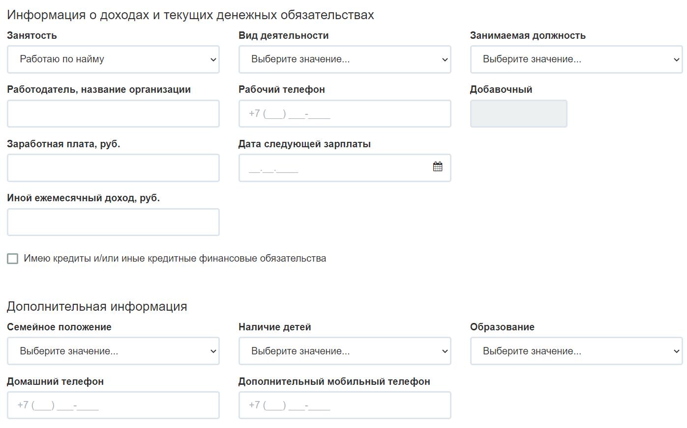 внесение информации о доходахв МКК Ализайм