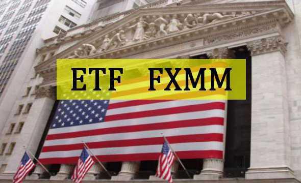 Обзор фонда FXMM