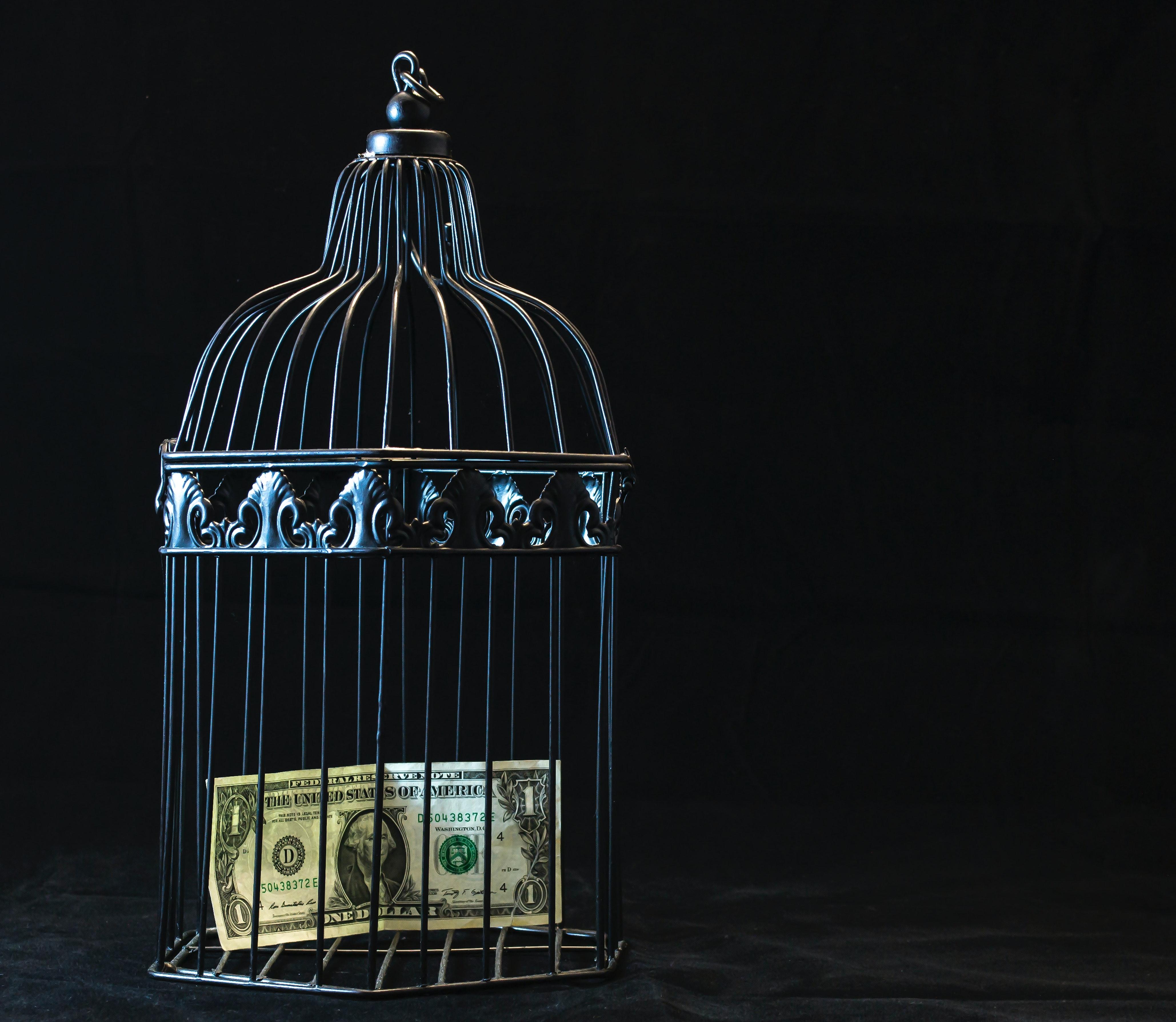 Что делать, если на тебя взяли кредит без твоего ведома